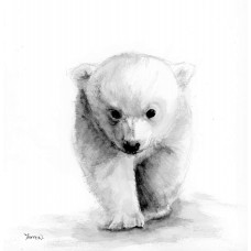 Polar Bear - Art Print