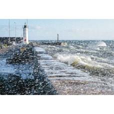 Sea Wall Anstruthers - Art Print