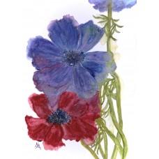 Anemone - Art Print