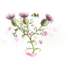 Bee & Thistle - Art Print