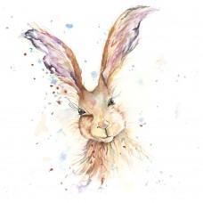 Hamish Hare - Art Print