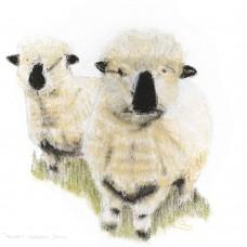 Newmill Hampshire Downs - Art Print
