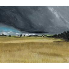 Scotlandwell Summer Fields - Art Print