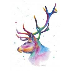 Majestic Colour - Art Print