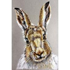 Hare - Art Print