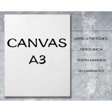 Canvas Print A3